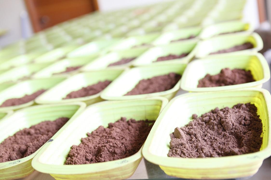 Por que fazer análise do solo?